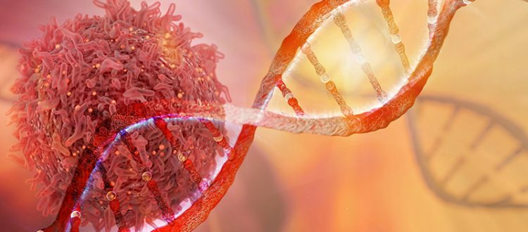 cancer and dna